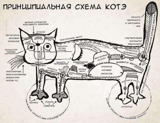 Схема котэ
