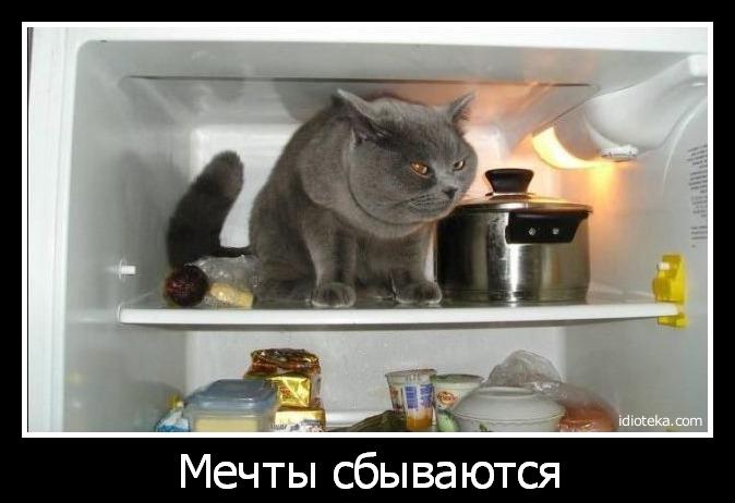 Mechty-sbyvautsya.jpg