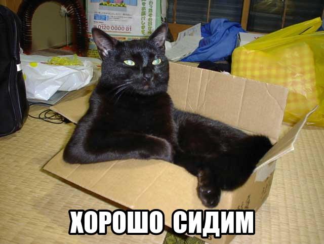 http://funkot.ru/wp-content/uploads/2013/05/horosho-sidim.jpg