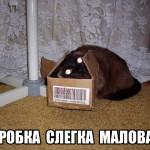 Коробка слегка маловата