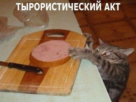 тыр-акт