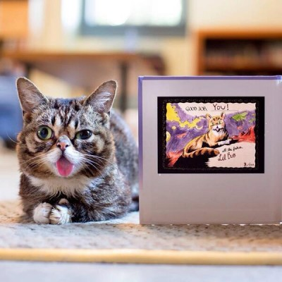 little bub у компьютера