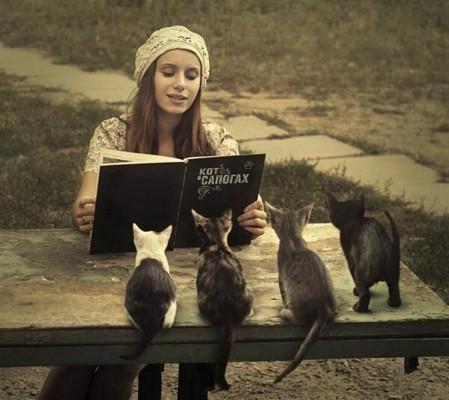 кошки слушают стихи