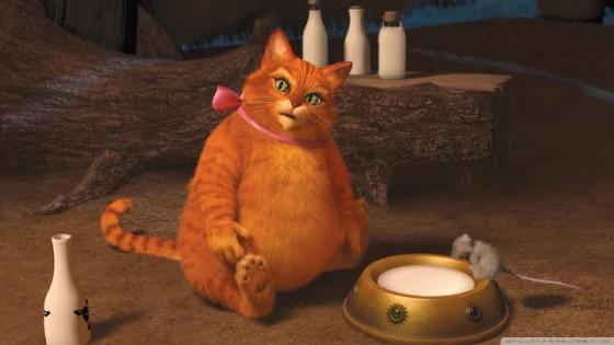 толстый кот в сапогах