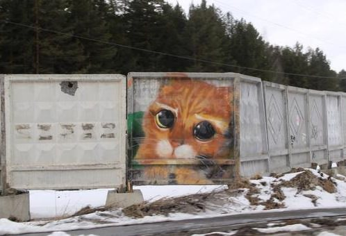 граффити кот из Шрека в Екатеринбурге