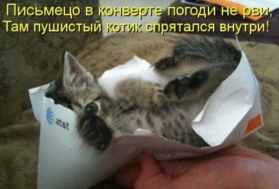 письмецо в конверте погоди не рви - там пушистый котик спрятался внутри