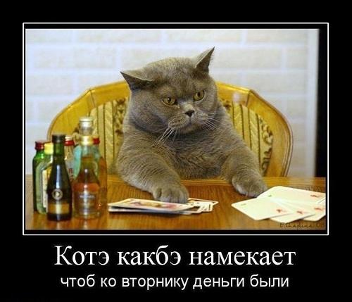 Кошка из соленого теста фото сов