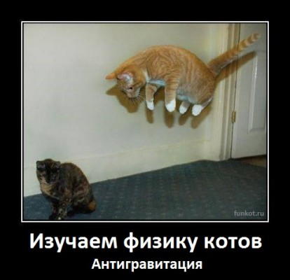 демотиватор - кот без гравитации