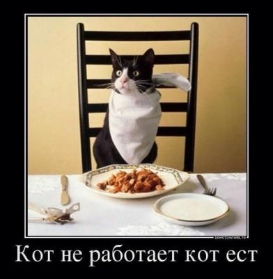 кто не работает тот кот