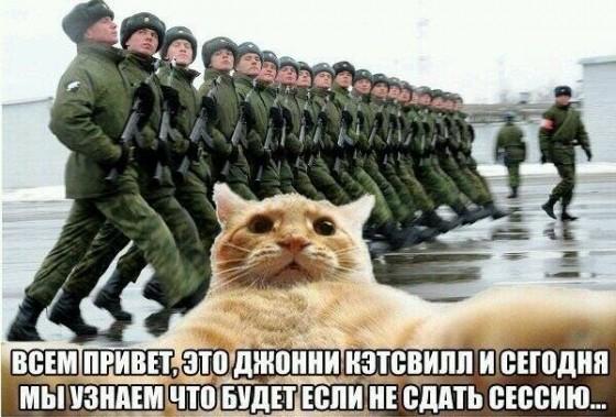 Джонни Кэтсвилл в армии