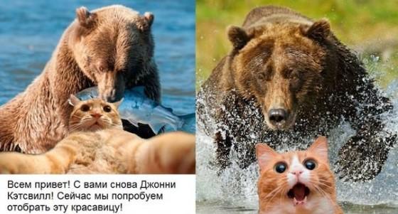 jonny-s-ryboi-medved