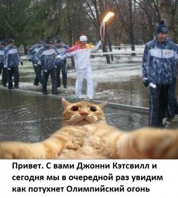 ketsvill-olimpiada-saratov