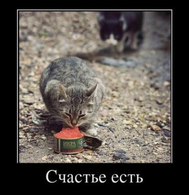 счастье есть - икру