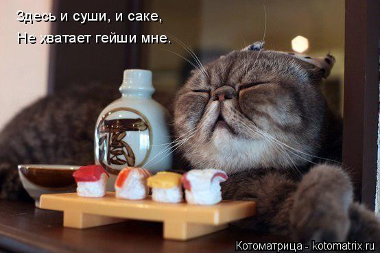 http://funkot.ru/wp-content/uploads/2014/06/sushi-i-sake.jpg