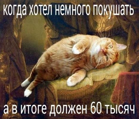 кот обжора мем