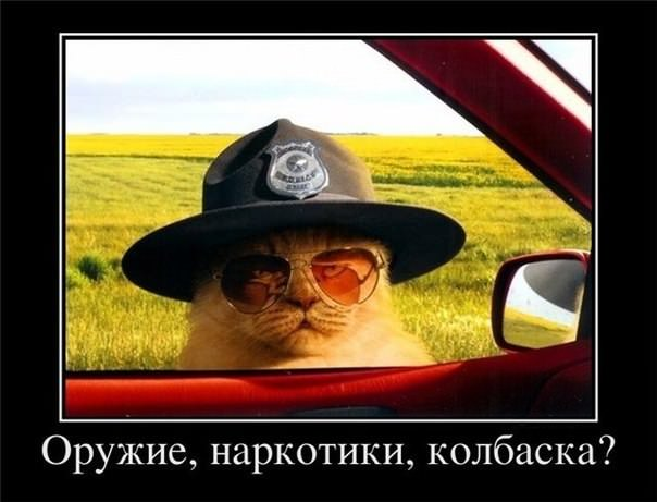 Задержан полицейский из Авдеевки, требовавший 20 тыс. грн взятки, - СБУ - Цензор.НЕТ 8660