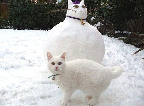 толстый кот снеговик