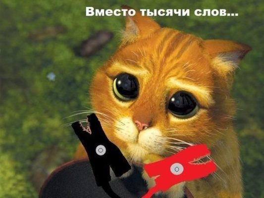 котик просит прикурить авто